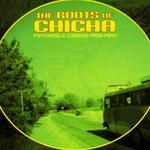Rootsofchicha_2