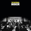 02_the_national_boxer_3