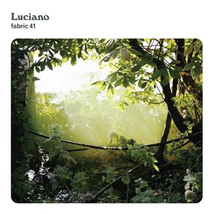 Lucianofabric41
