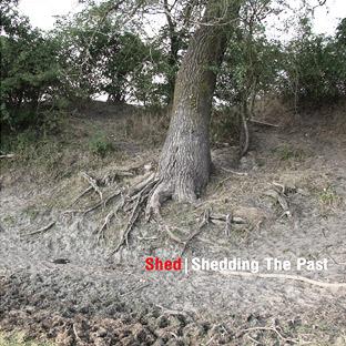 Shedsheddingthepast